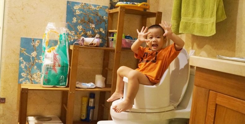 boom-potty-review